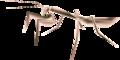 TP Female Mantis Render.png