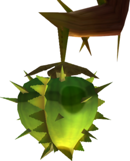 SS Water Fruit Model.png