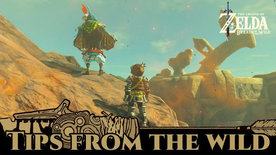 BotW Tips from the Wild Banner 20.png