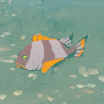 BotW Hyrule Compendium Mighty Porgy.png
