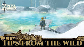 BotW Tips from the Wild Banner 05.png