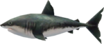 MM3D Savage Shark Model.png