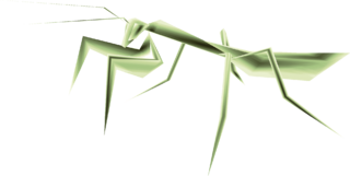 TP Male Mantis Render.png
