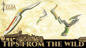 BotW Tips from the Wild Banner 04.png