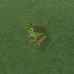BotW Hyrule Compendium Tireless Frog.png