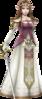 HW Zelda Era of Twilight Robes Render.png