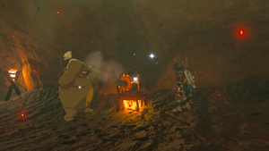 BotW A Brother's Roast.png