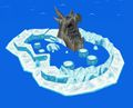Ice Ring Island.jpg