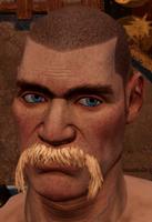 Male beard 6.png