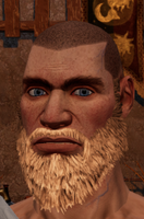 Male beard 4.png