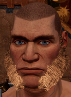 Male beard 2.png