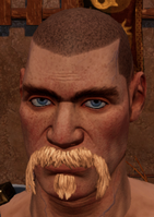 Male beard 5.png