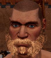 Male beard 1.png