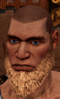 Male beard 3.png