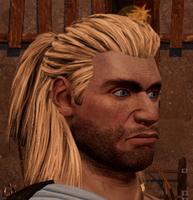 Male hair 10.png
